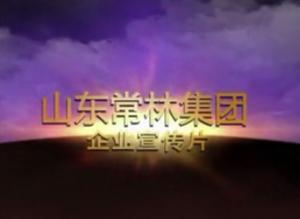 山东常林集团宣传片