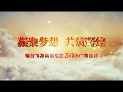 飞龙集团30周年历史回顾专题片
