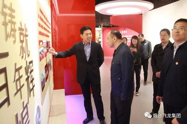团省委副书记调研飞龙集团团建工作