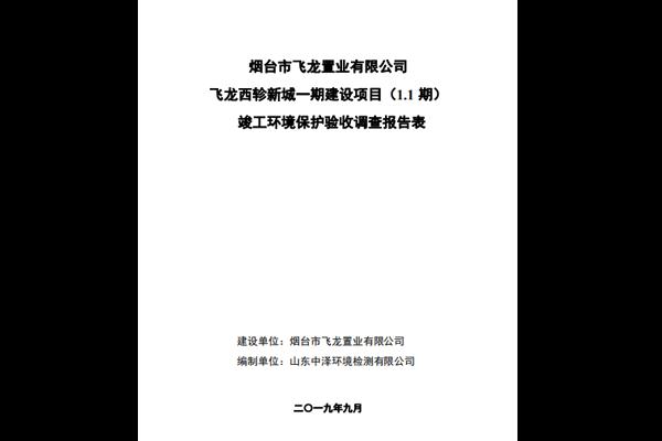 2019-YT963飞龙置业西轸新城--验收