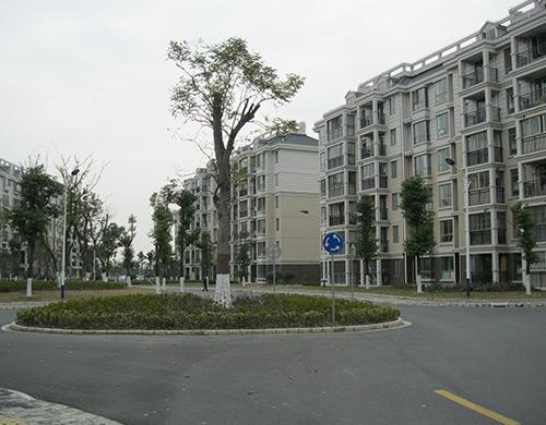 上海佘山江秋中心村2期