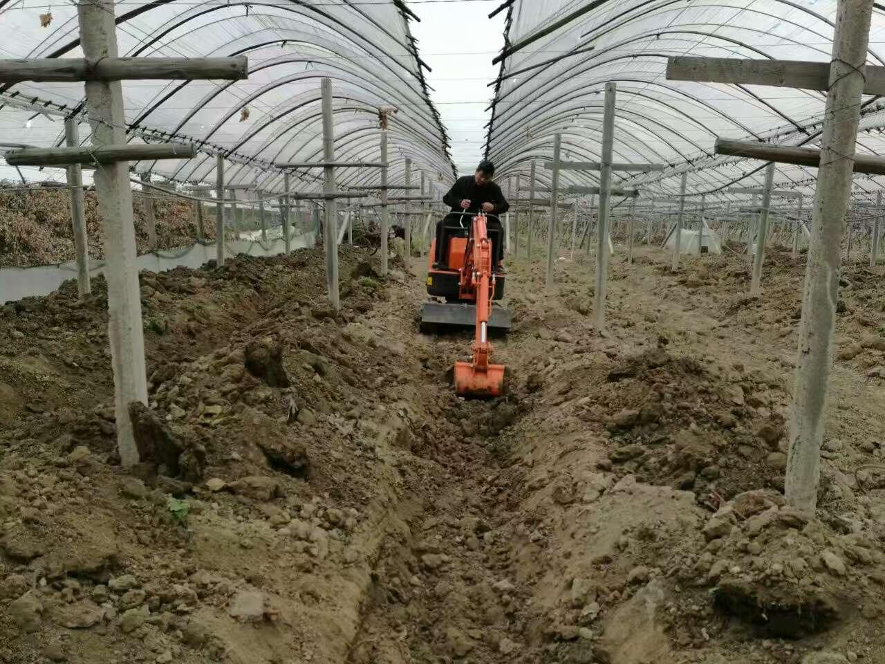 山鼎SD09超小型挖机大棚施工作业