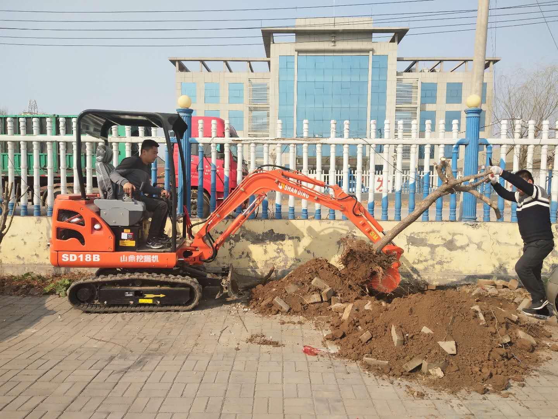 山鼎SD18B微型挖掘机挖树坑